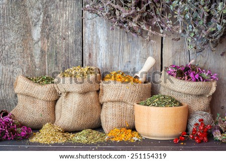 Dried healing herbs in hessian bags and in mortar on wooden wall background, herbal medicine. - stock photo