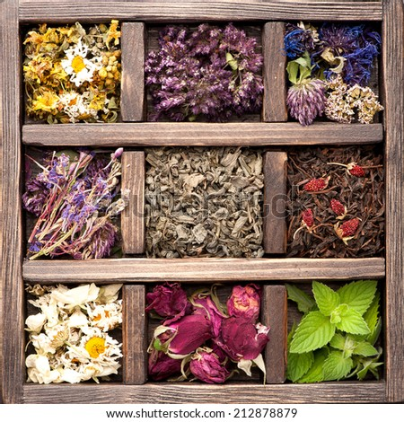 Dried Herbs and flowers in vintage box. Collage. - stock photo