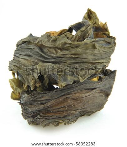dried kelp - stock photo