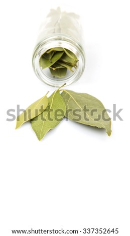 Dried laurel leaves over white background