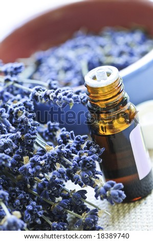 Dried lavender herb and essential aromatherapy oil - stock photo
