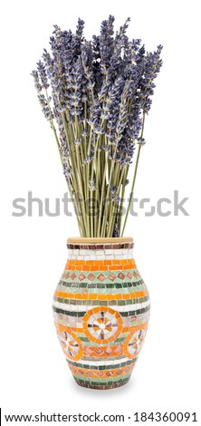 Dried Lavender in vase isolated on white - stock photo