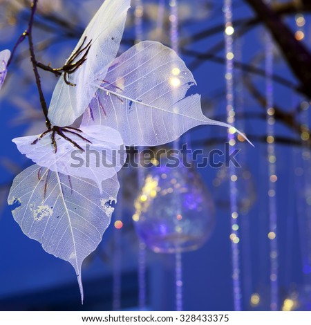 Dried Leaf skeleton as a wedding decoration in blue light - stock photo