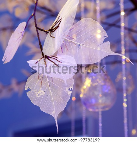 Dried Leaf skeleton like wedding decoration - stock photo
