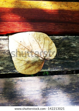 dried leave on the wood - stock photo