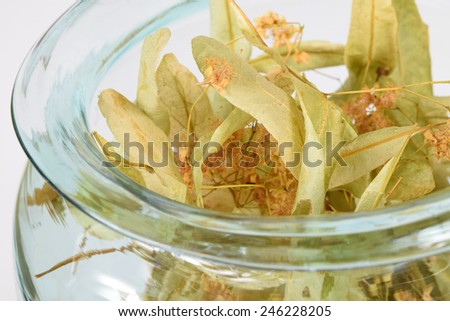 Dried Linden Flowers for Herbal Tea - stock photo