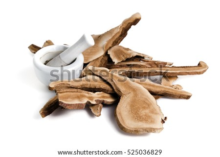 Dried lingzhi mushroom (Also called as Reishi mushroom in Japan, Lingcheu in Thailand, Lingzhi mushroom in China, Ganoderma Lucidum Karst or lacquered mushroom) with mortar and pestle