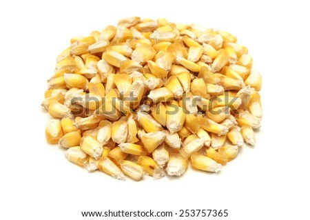 Dried maiz chulpe on a white background - stock photo