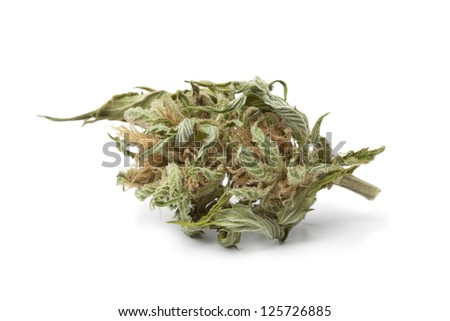 Dried marijuana bud with visible THC on white background - stock photo