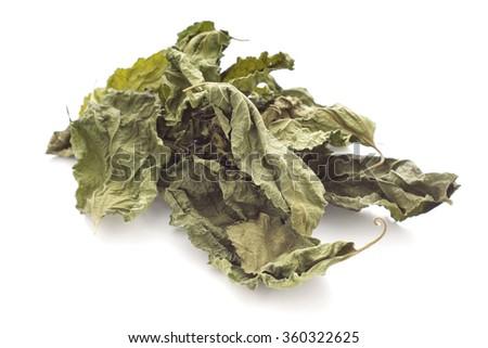 Dried Mulberry Leaves, an caffeine-free tea alternative. Non sharpen - stock photo
