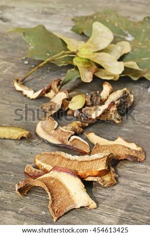 Dried mushrooms - stock photo