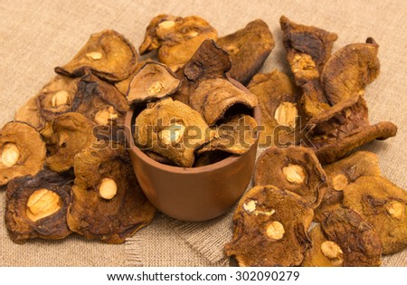 Dried mushrooms on canvas close up