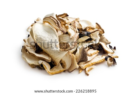 dried mushrooms on white background - stock photo