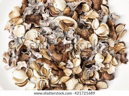Dried natural decoration. Potpourri theme. Spa theme. - stock photo