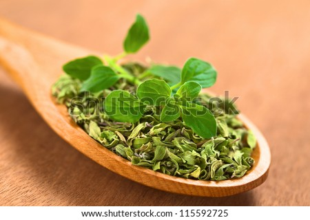 Dried oregano leaves on wooden spoon with a fresh oregano sprig on top (Selective Focus, Focus on the front leaves of the oregano sprig) - stock photo