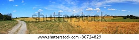 dried pea fields, the old dirt road with blue sky and clouds near the village of Tisnovska Nova Ves, in Czech Republic - stock photo