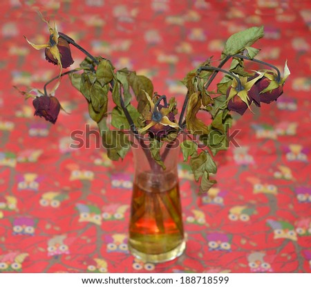 Dried red rose on glass jar - stock photo