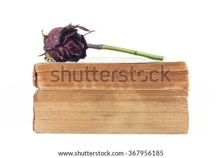 Dried rose and old books on white background, selective focus. - stock photo