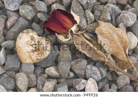 Dried Rose and Rock Heart (Fade)