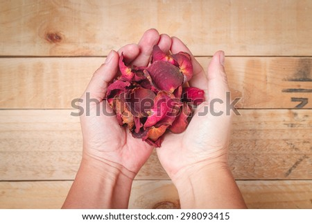 Dried Rose petal on male Hand on wooden background  - stock photo