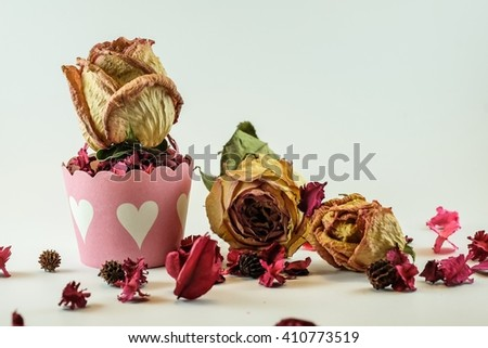 Dried roses on white background - stock photo