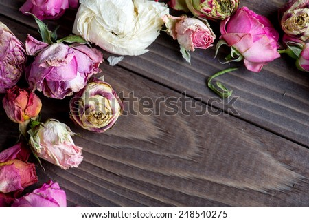 Dried roses. Valentines background. - stock photo