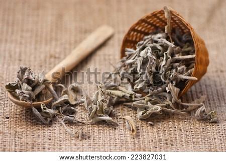 Dried salvia officinalis  - stock photo