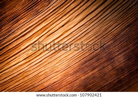 Dried shel of bamboo shoots texture and background detail view - stock photo