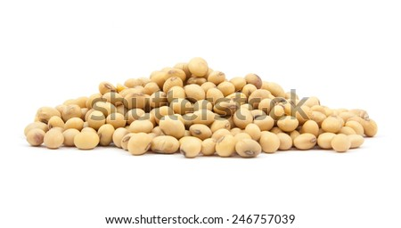 Dried soybean on isolated on a white background - stock photo