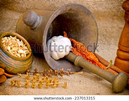 Dried spices, mortar and pestle - stock photo