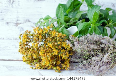 Dried St. John's wort, thyme and mint - stock photo