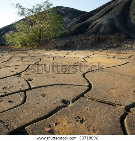 Dried up technological waste of activity of a colliery in Ukraine - stock photo