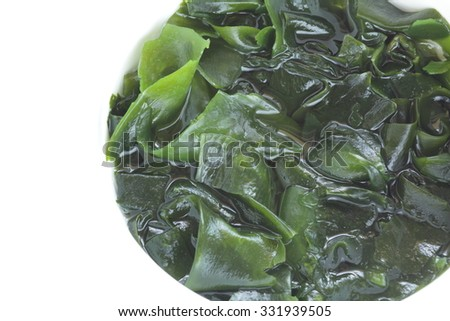 Dried Wakame Seaweed in water for prepared food image