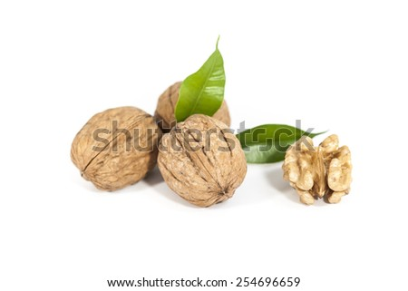 Dried walnuts with leaves