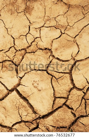 dried waterless ground surface with animal footstep on it - stock photo