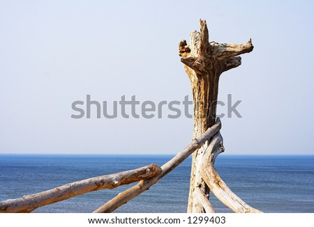 driftwood - stock photo