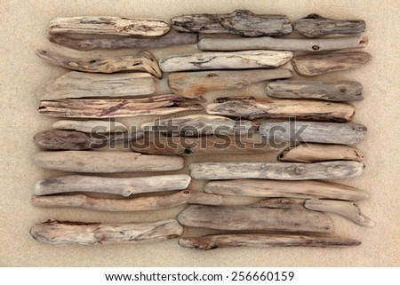 Driftwood abstract design on beach sand background. - stock photo