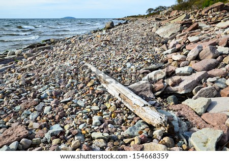 Driftwood at the stony coast of Oland in the Baltic Sea, Sweden. - stock photo