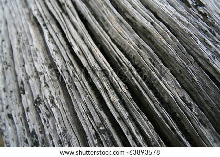 Driftwood background abstract, old wood - stock photo