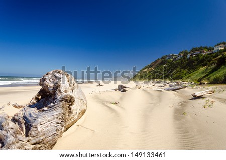 Driftwood on the beach at Lincoln City with a lush green cliff with houses on it - stock photo