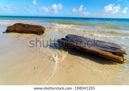Driftwood washing up on shore of a tropical Caribbean beach - stock photo