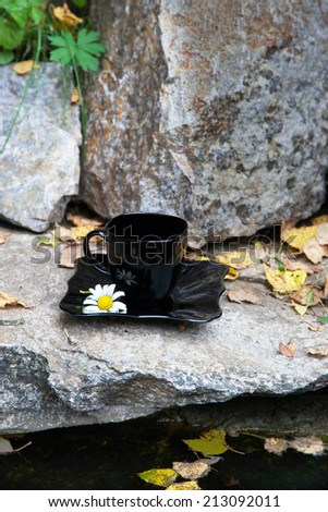 drink with Chamomile in stone near the water in autumn - stock photo