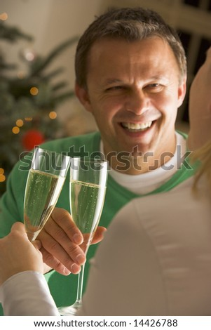 Drinking Champagne - stock photo