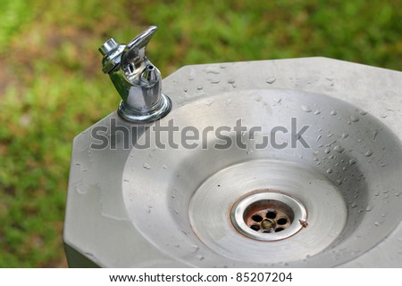 Drinking water at the Garden - stock photo