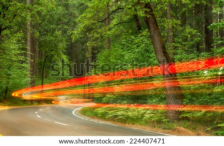 Driving through a national park - stock photo