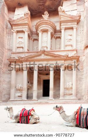 dromedaries resting in front of the Treasury of Petra in Jordan - stock photo