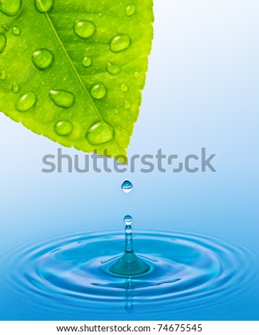 drop and concentric circles in water - stock photo