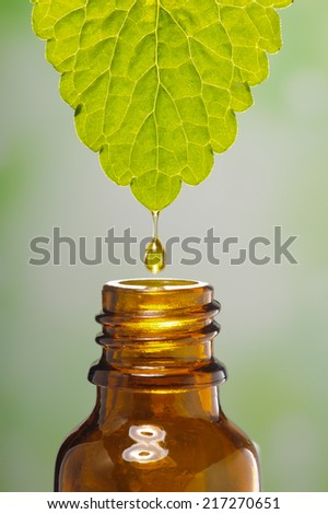 drop of medical plant - stock photo