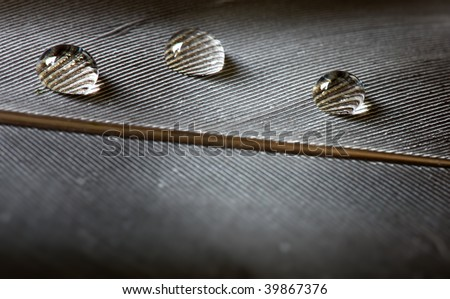 drops - stock photo