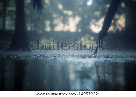 Drops of heavy rain in the tropical jungles - stock photo